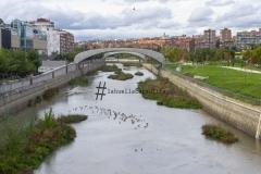Río Manzanares (Madrid)