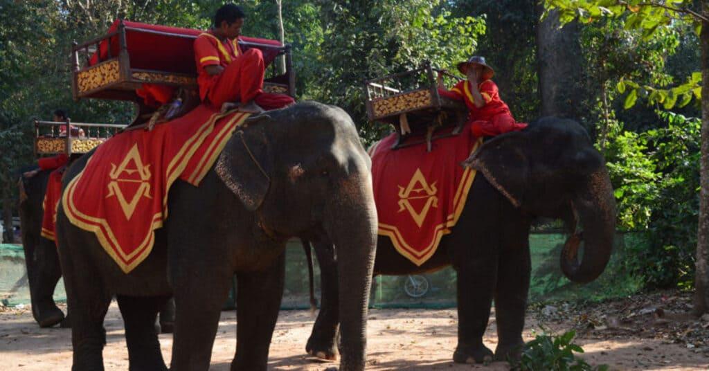 Parque Arqueológico Angkor Wat