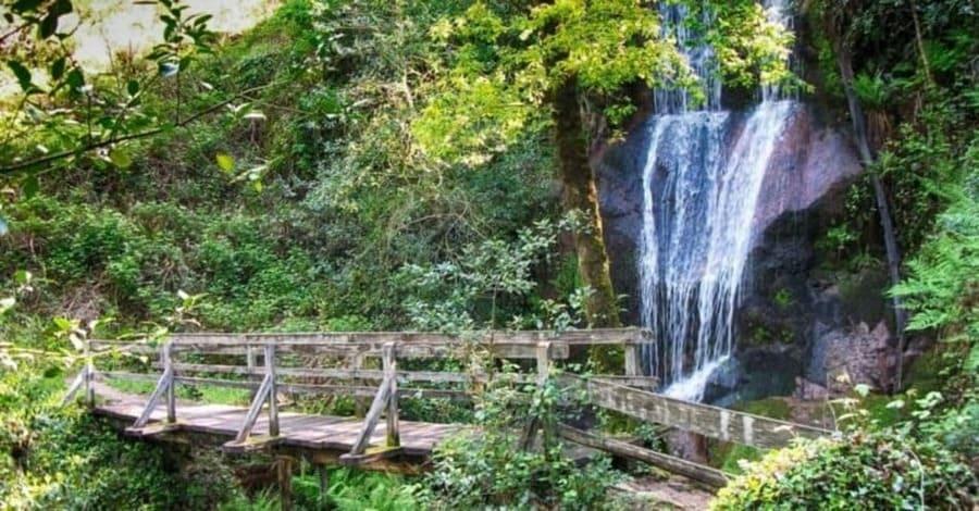el sendero Trilho da Preguiça, un lugar ideal para reandar el camino