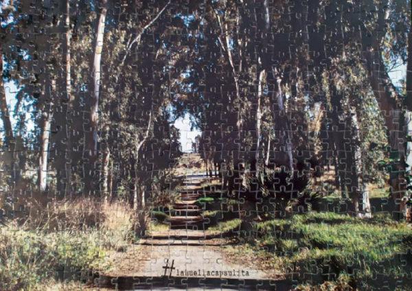 puzzle fotográfico de cartón